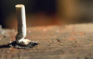 տրորված ծխախոտ