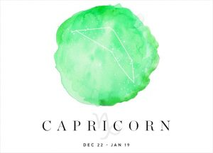 Capricorn - zodiac sign